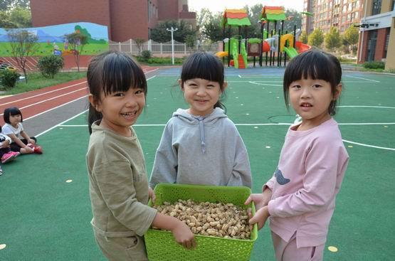 """诸城市实验幼儿园:香榭里园区""""落花生""""主题教育活动"""
